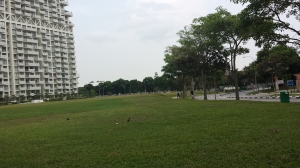The open field near former ITE Bishan school campus site.